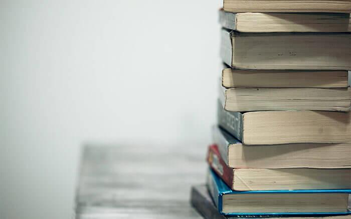 Kloppen economieboeken?